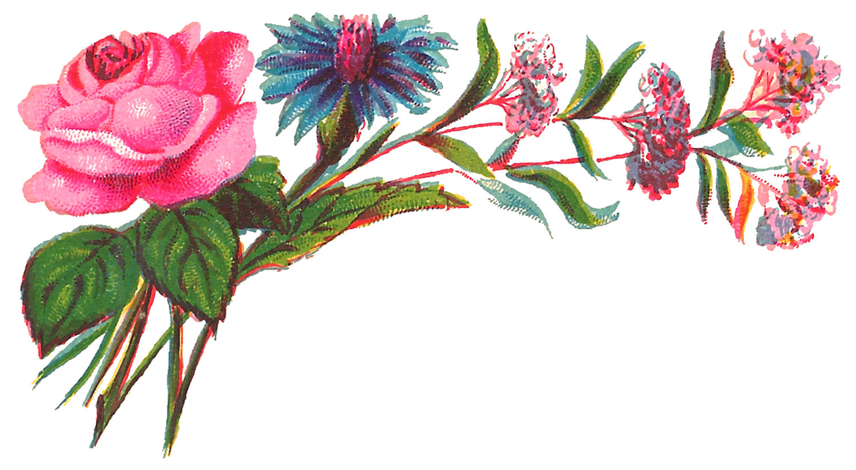 antique images digital decorative flower corner download rose rh antiqueimages blogspot com Decorative Line Clip Art Chevron Decorative Borders Clip Art