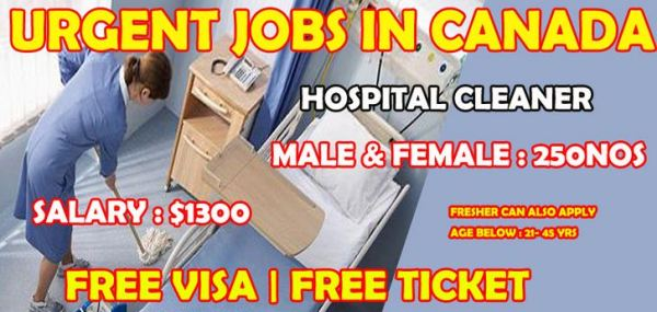 Hospital Cleaning Job Vacancies in Canada