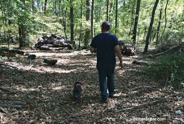 oz hiking trail georgia