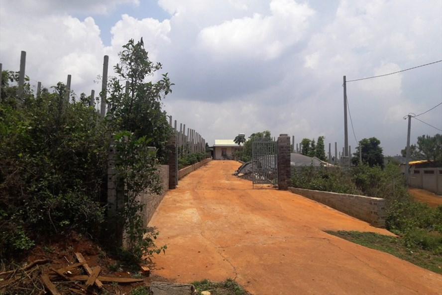 Gia Lai: Bắt khẩn cấp Trưởng Ban quản lý rừng phòng hộ Bắc Biển Hồ