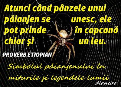Atunci când pânzele unui păianjen se unesc, ele pot prinde în capcană chiar şi un leu