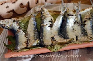sardinas-teja6