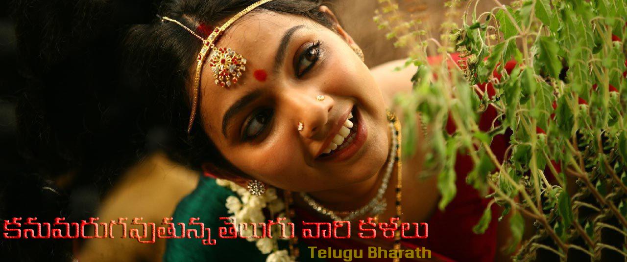 కనుమరుగవుతున్న తెలుగు వారి కళలు, సంప్రదాయాలు మరియు పండుగలు - Telugu Kalalu