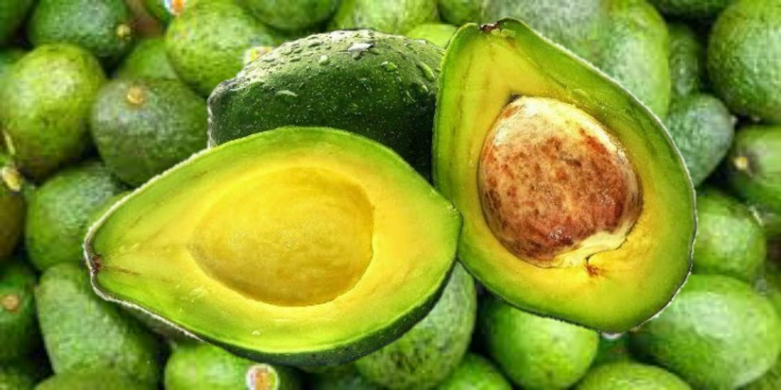 10 Makanan Pembakar Lemak Paling Sempurna Untuk Program Diet
