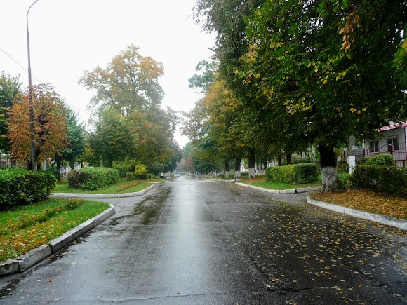 Сокаль. Улица Шептицкого