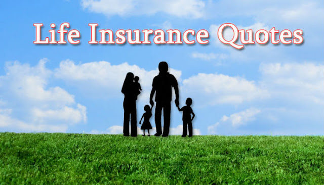 Get A Life Insurance Quote Online Awesome Know About The Value Of Life Insurance And How To Get A Life