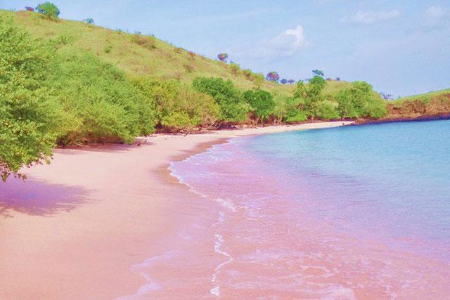 Pantai Pink Namo