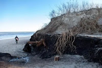 Erosion and a changing landscape are givens on Cape Cod. Above, storm surge ate away at Coast Guard Beach in Eastham in February 2013. (Credit: Globe File Photo) Click to Enlarge.