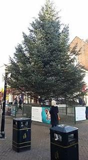 Christmas tree in Northampton by Marc Bazeley
