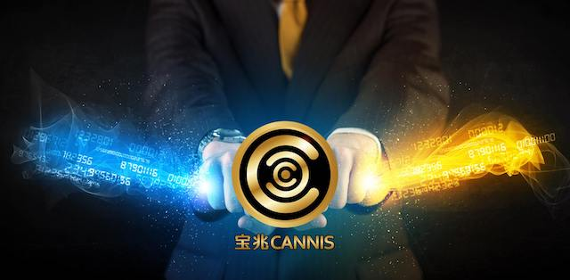 Image result for cannis application