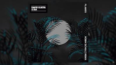David Guetta & Sia - Flames (Robin Schulz #Remix)