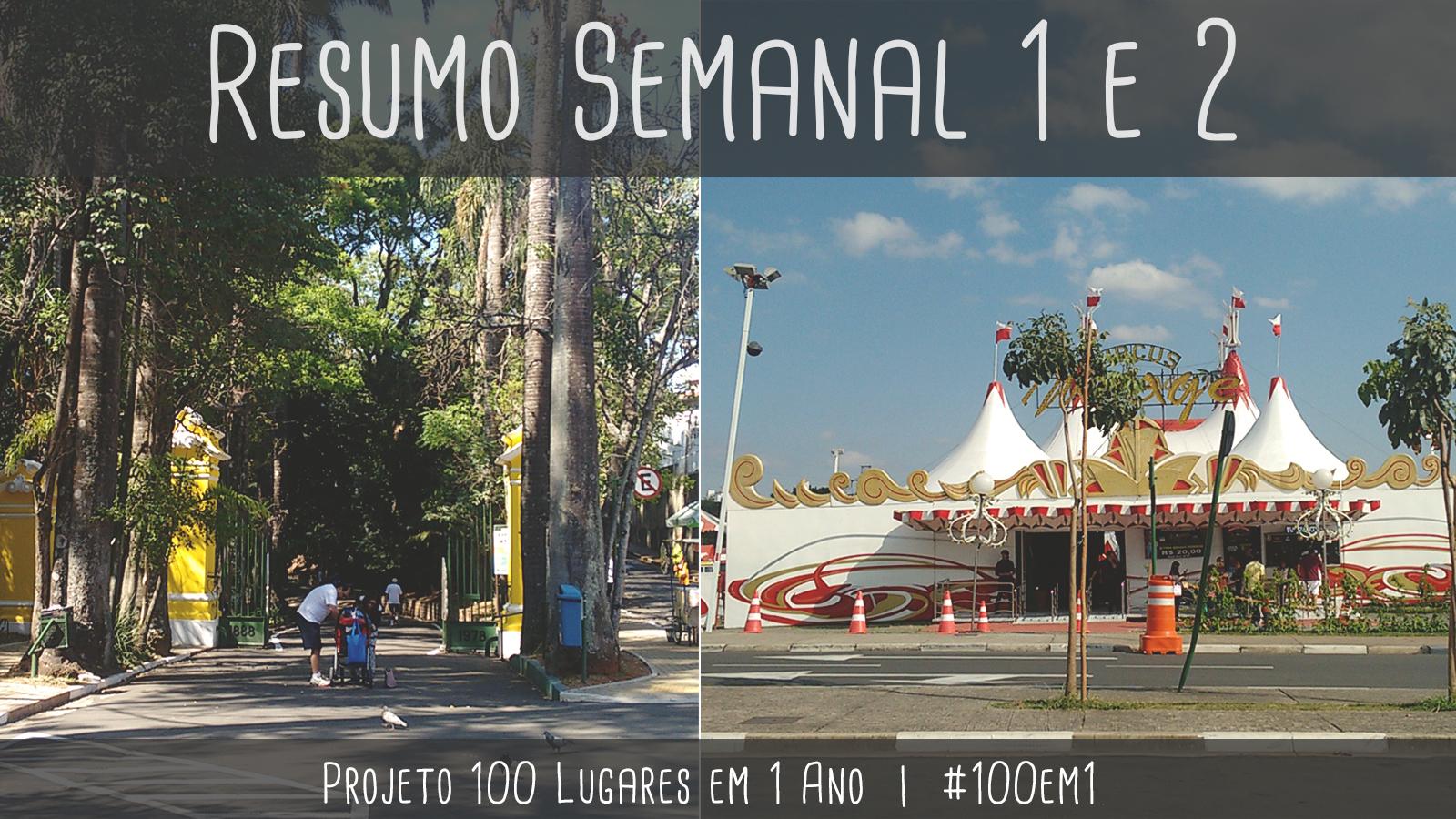 capa resumo projeto #100em1