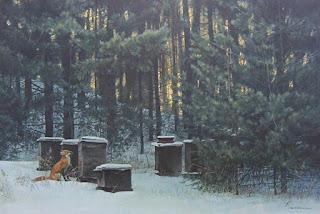 Οι μέλισσες τον Δεκέμβριο με τα χιόνια