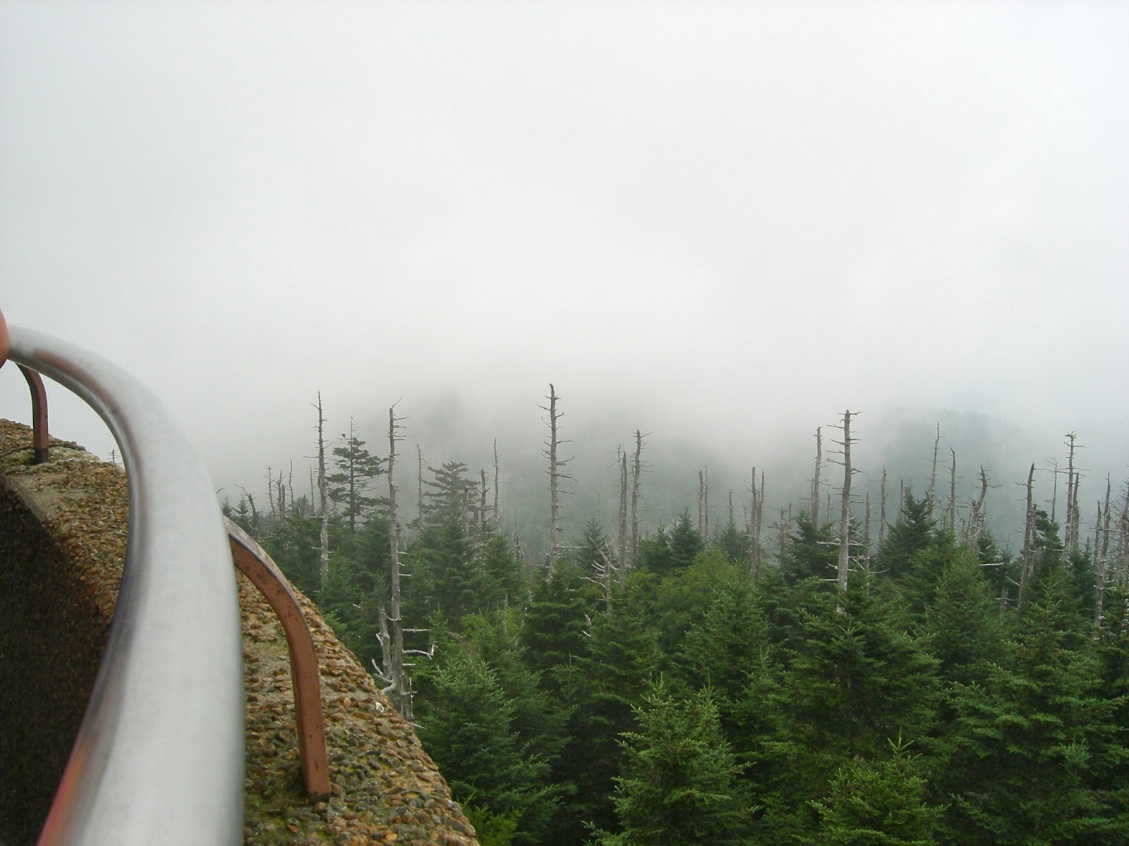 Clingman's Dome Hike - Smoky Mountains