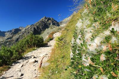 Szlak na Batyżowieckie Pleso