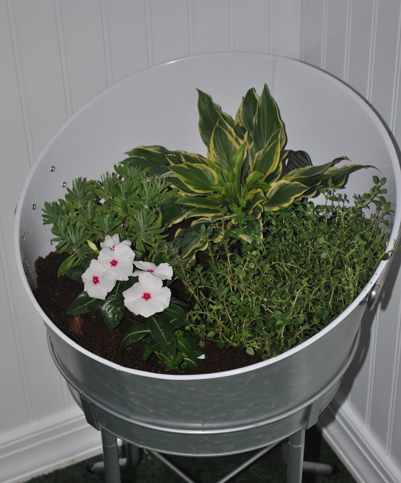 Iu0027m Not Usually One To Decorate For The Seasons, But When I Saw This Idea  Of A Mini Indoor Garden On The Inspired Room, I Knew I Had To Give It ...