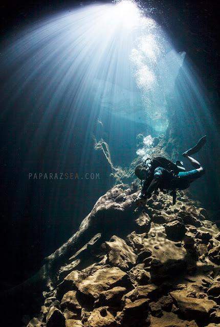 Scuba Diving, Underwater Photography, PADI, Learn Scuba, We Dive Manila, PaparazSea