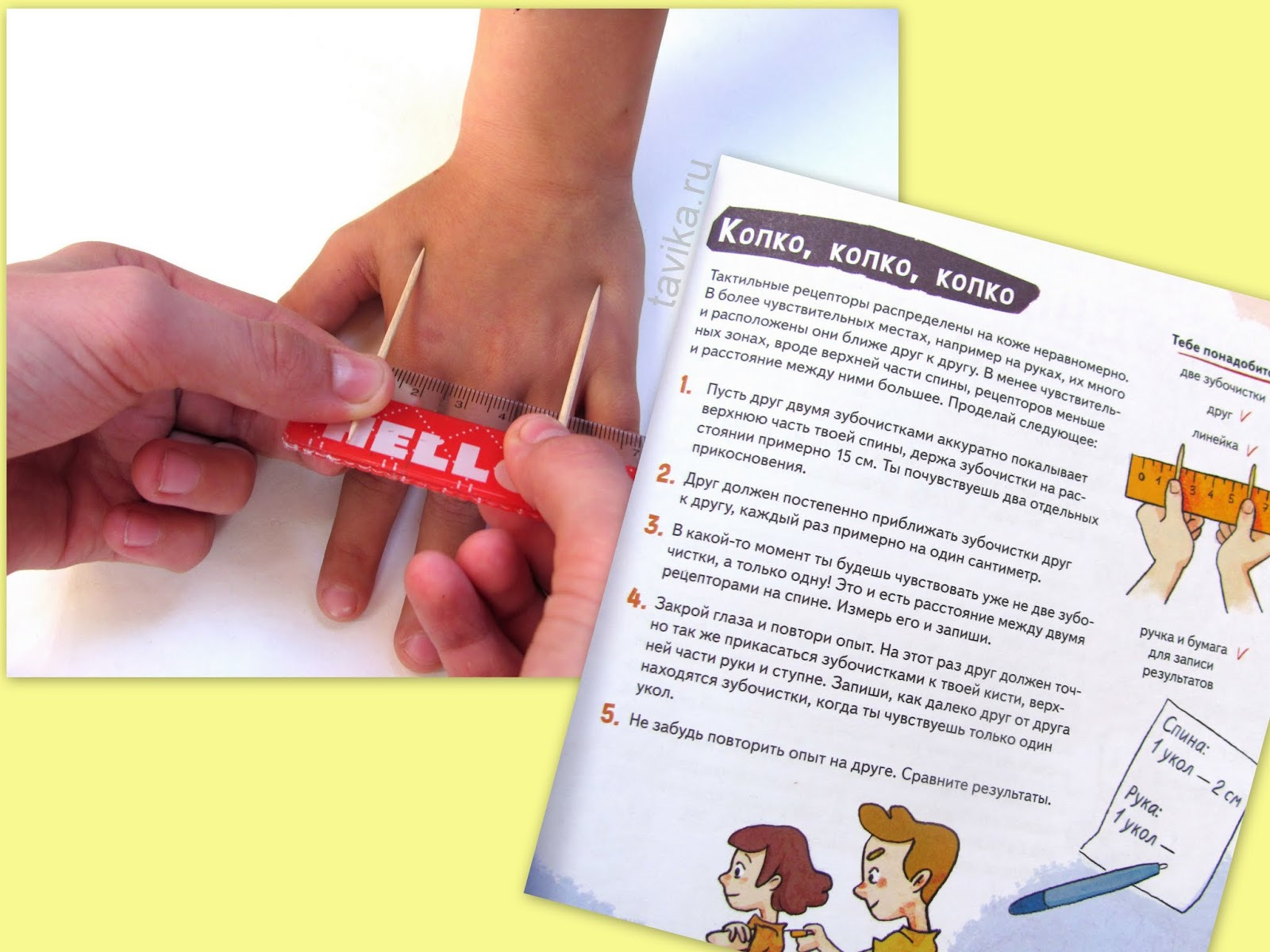 Опыты по биологии для детей