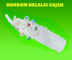 kondom silikon , kondom sungut gajah , kondom belalai gajah