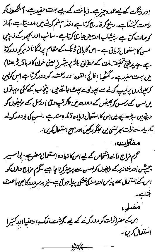 Lehsun urdu book