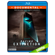 Racing Extinction (2015) Full HD 1080p Audio Ingles 5.1 Subtitulada