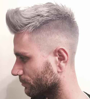 Short Grey Hairstyle for men
