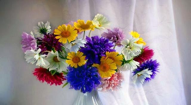 HD Beautiful flower Facebook cover