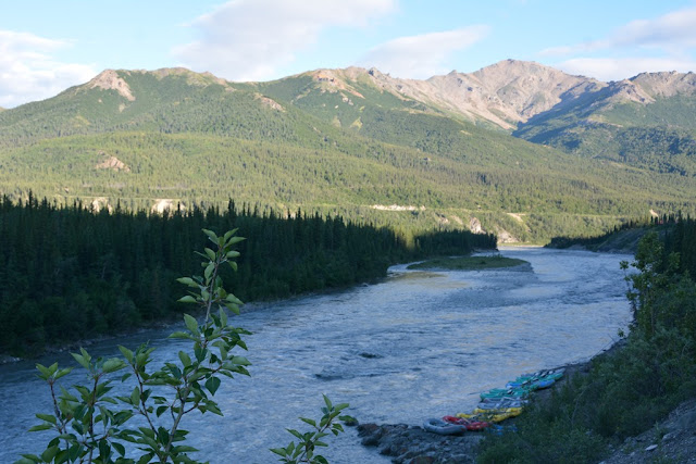 Denali City river