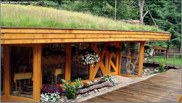 estabelecimento com telhado verde