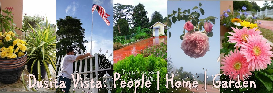 Dusita Vista:People | Home | Garden