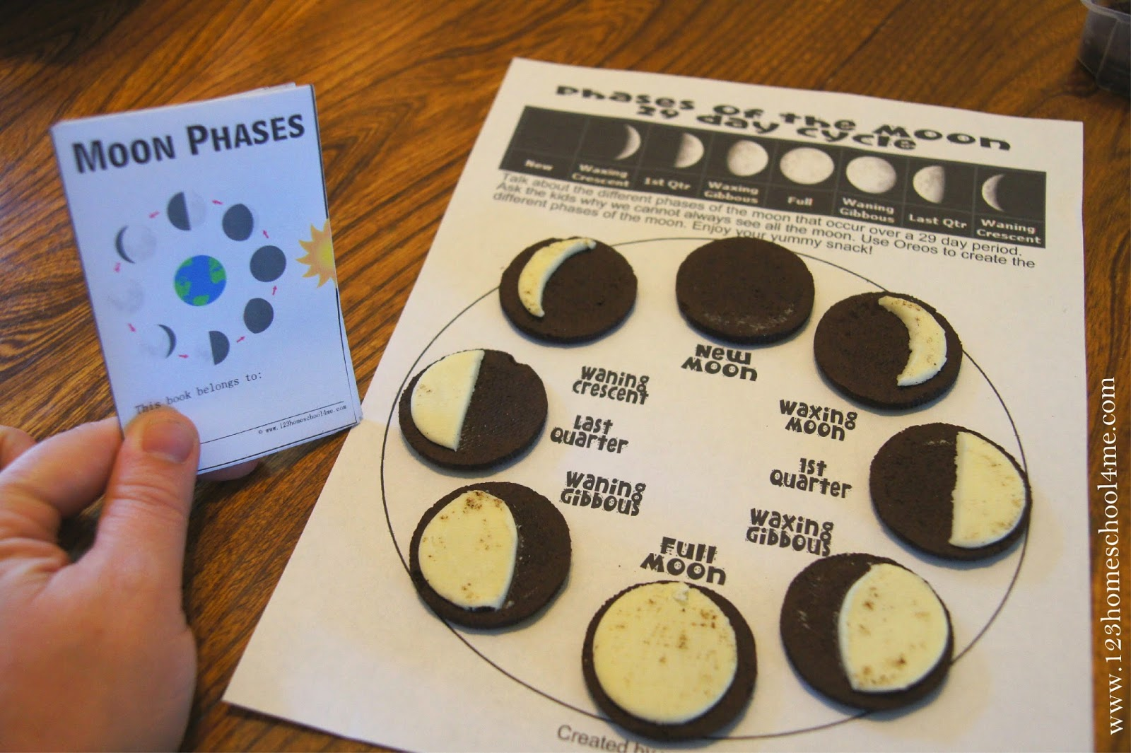 FREE MOON PHASES MINI-BOOK (instant download) | Free Homeschool Deals ©