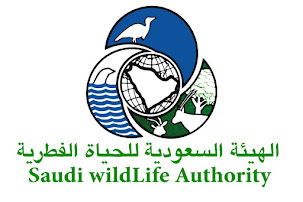 Saudi Wildlife Authority