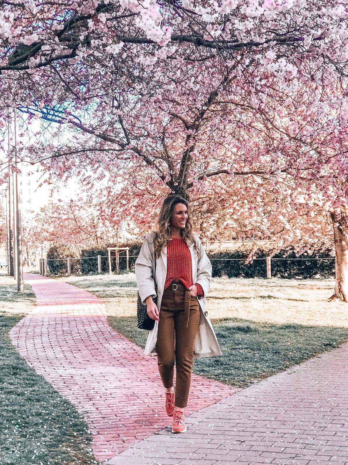 árboles rosas Pamplona