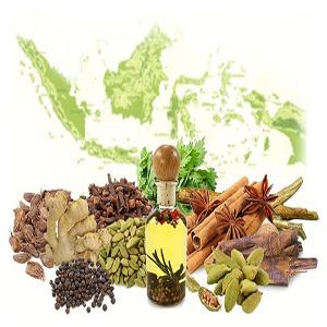 obat kuat herbal yang paling ampuh, terbaik dunia, obat tahan lama yang paling laris di Indonesia, jamu kuat tahan lama, obat kuat herbal tahun 2018