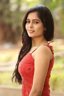 Actress Madhumitha Stills in Red Dress at Lajja Movie Press Meet  0009