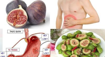 cách chữa đau dạ dày bằng quả sung
