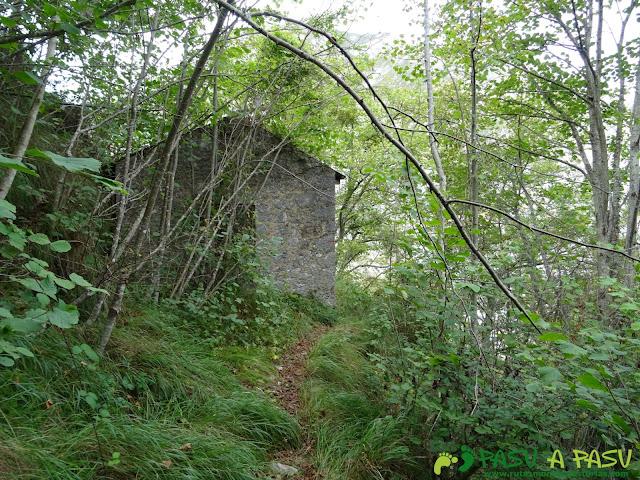 Canal de Reñinuevo: Caseta en bosque