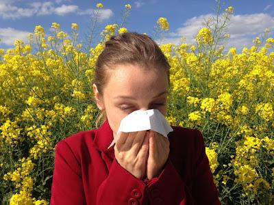 Combatir alergias en Farmacia 2 online