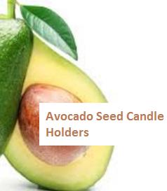 Avocado Seed Candle Holders