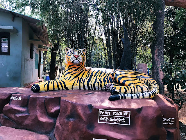 Amrabad Tiger Reserve Forest-one day trip to srisailam from hyderabad
