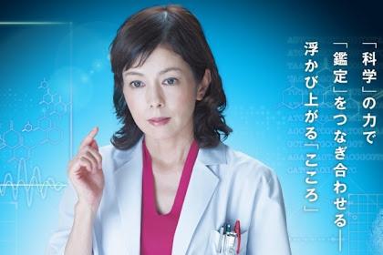Sinopsis The Woman of S.R.I. Season 15 (2015) - Serial TV Jepang