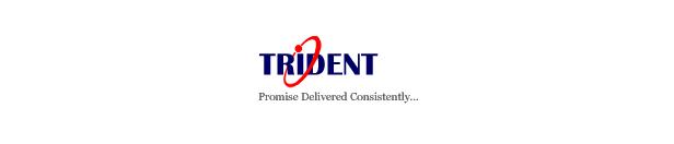 Trident-Information-System-logo-walkin