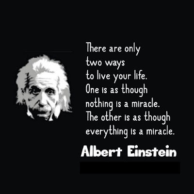Excellence Quotes Einstein