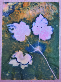 Wet cyanotype, Sue Reno, Image 23