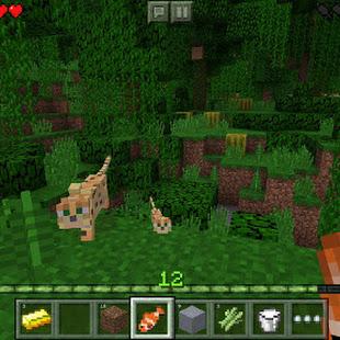 minecraft apk free download full version 0.14 0