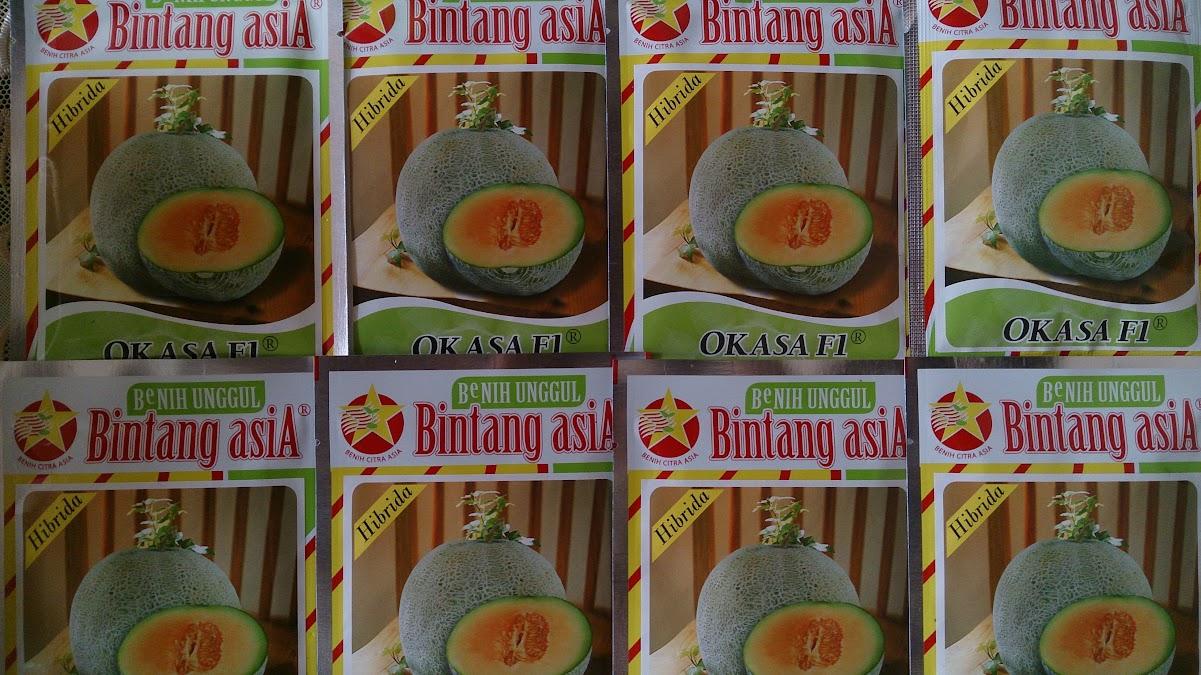 Bintang Citra Asia, Benih Melon, Jual benih, Petani, Pertanian, Tahan Layu, BCA