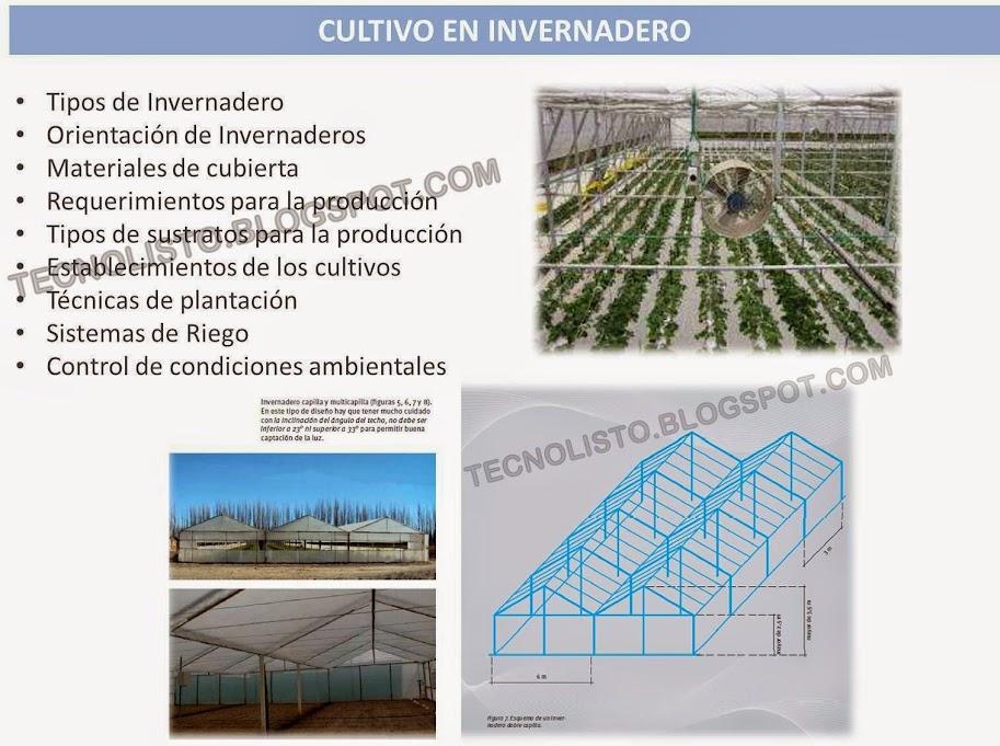 """""""Manual de Cultivo Siembra en invernaderos"""""""