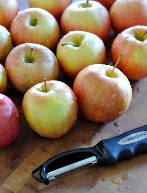 Organic-Gala-Apples-tasteasyougo.com