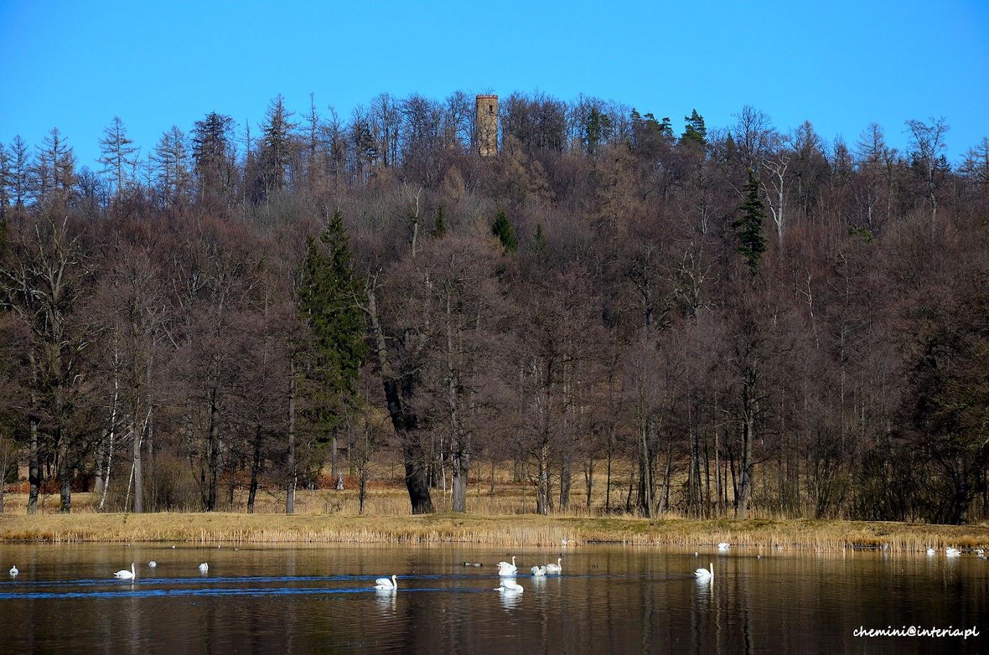 Park w Bukowcu