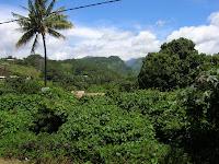 isla de tahiti, polinesia francesa,vuelta al mundo, round the world, información viajes, consejos, fotos, guía, diario, excursiones